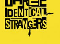 """Poster for the movie """"Three Identical Strangers"""""""