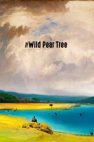 "Poster for the movie ""The Wild Pear Tree"""
