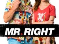 "Poster for the movie ""Mr. Right"""
